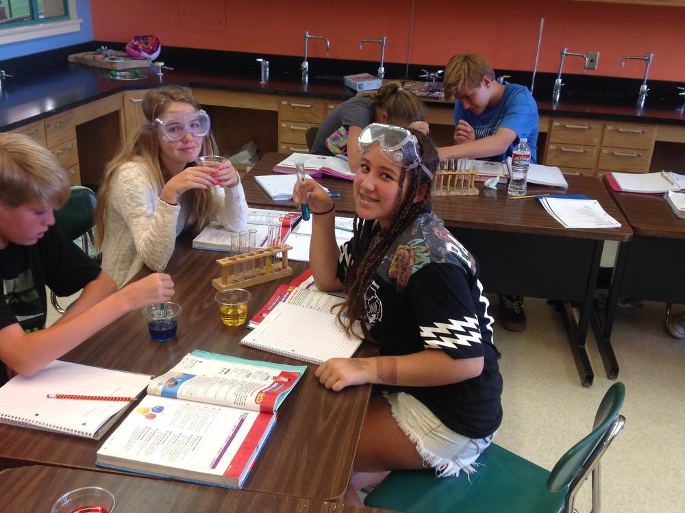 8th Grade Science Snapshots